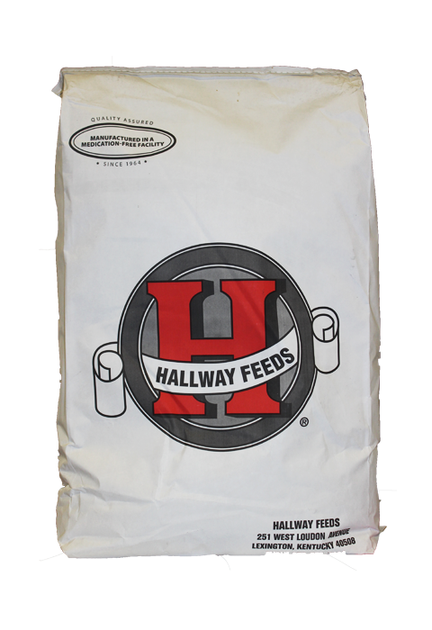 Hallway Feeds Bag with red logo
