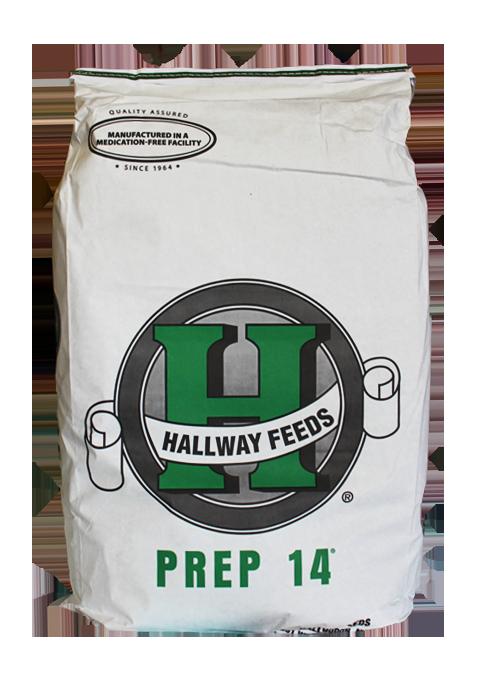 Prep 14 bag