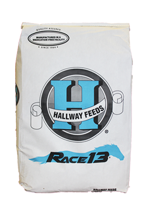 Race 13 new bag 5.png