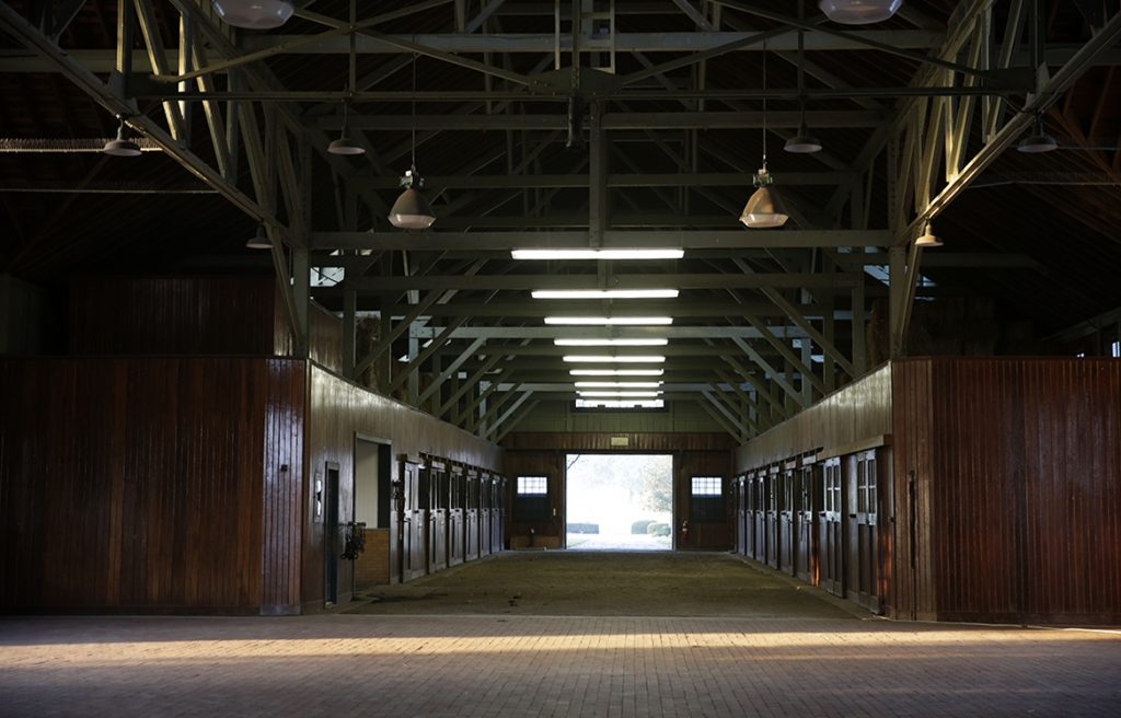 Wooden horse barn aisle